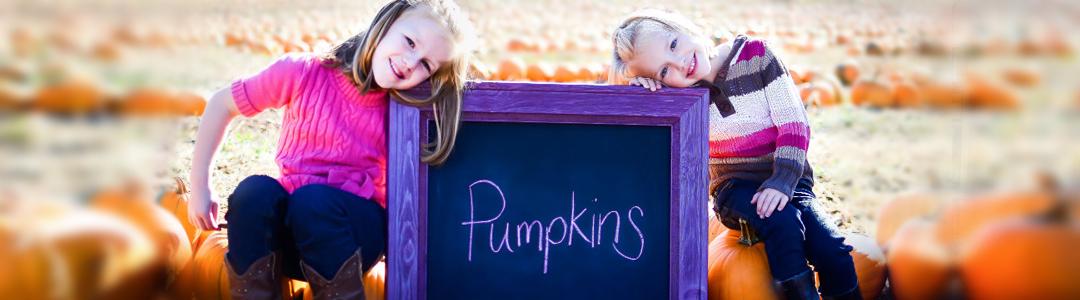 Pumpkin Patch King County, Pierce County, South Sound, Auburn, Seattle